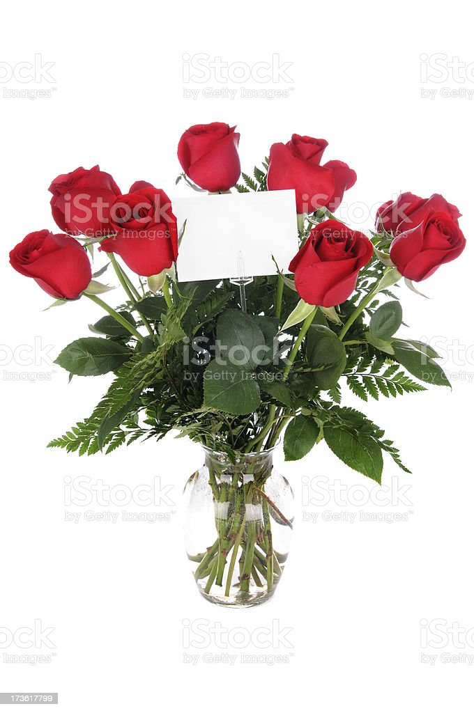 Dozen Roses! (XL) stock photo