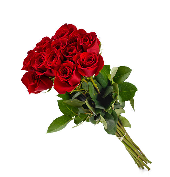 dozen roses - bouquet stock photos and pictures