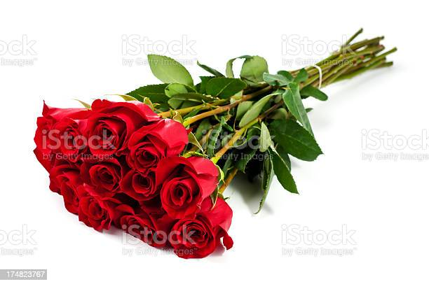 Dozen roses picture id174823767?b=1&k=6&m=174823767&s=612x612&h=xl5hjan3jmjguj1g1uyoskwefpp9om1iblpkfws9tsk=
