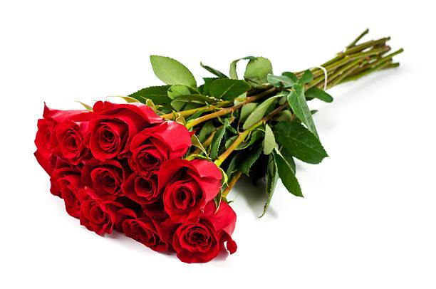 Dozen roses picture id174823767?b=1&k=6&m=174823767&s=612x612&w=0&h=kqz8dunpao89xnf2rnx20n8fkdrdrlum96gg8dakymm=