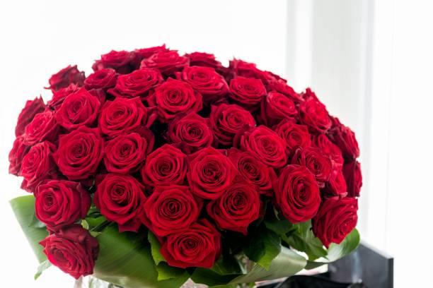 Dozen roses picture id920979090?b=1&k=6&m=920979090&s=612x612&w=0&h=ohbjntwqtzgkmrw2fa8iv2zujsqiab28pmh6tlszvn8=