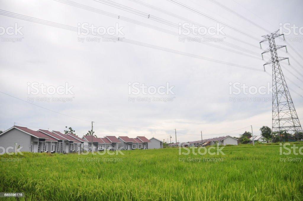 집 지역 pucangading, demak, 중앙 자와, 인도네시아에 서 수십 royalty-free 스톡 사진