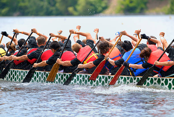 dragon boat race t-shirt - paddeln stock-fotos und bilder