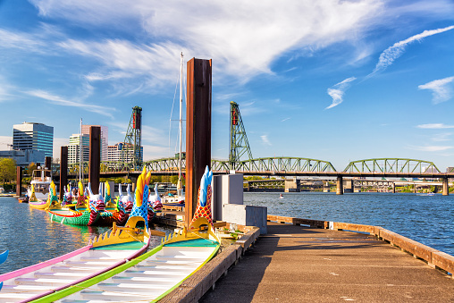 Dragon Boats And Hawthorne Bridge Stock Photo - Download Image Now