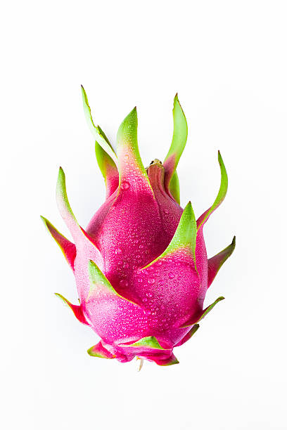 Dragon fruit fresh from the tree Dragon Fruit isolated against white background. pitaya stock pictures, royalty-free photos & images