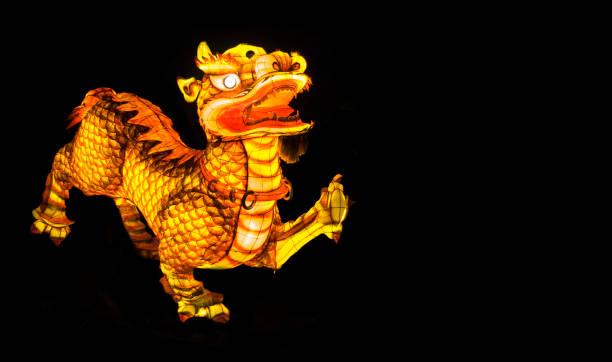 dragon  - tatto vorlagen stock-fotos und bilder