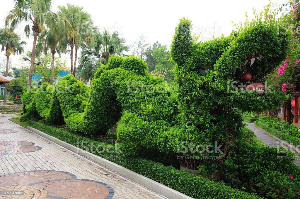 Dragon shaping bonsai stock photo