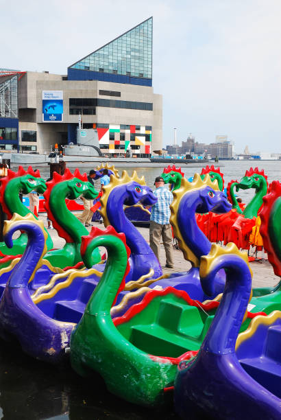 Dragon themed pedal boats Baltimore, MD, USA May 10, 2013 Paddle boats with a dragon design sit at the edge of Inner Harbor in Baltimore, Maryland inner harbor baltimore stock pictures, royalty-free photos & images