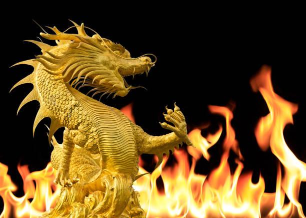 drache mit feuer hintergrund - chinesische zeichen tattoos stock-fotos und bilder
