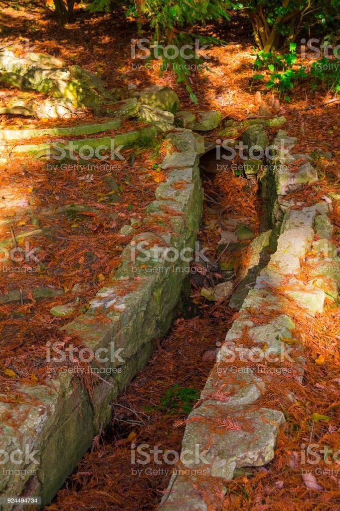 Drain in ground in Arboretum, Sochi, Russia stock photo