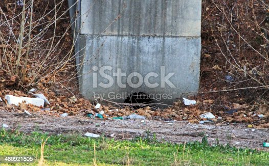 A water drainage site covered with litter