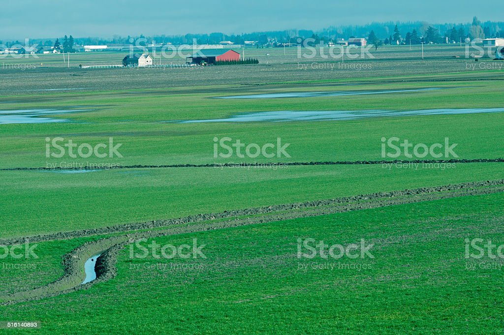Drainage canals cut through low-lying farmland in Washington state stock photo