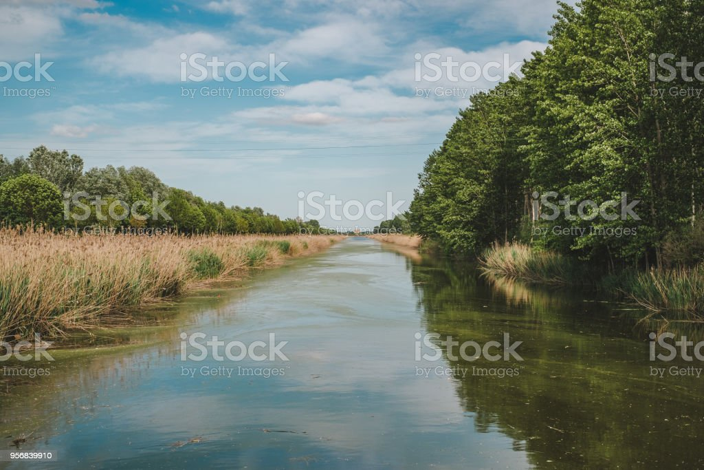 Drainage channel in Campotto stock photo
