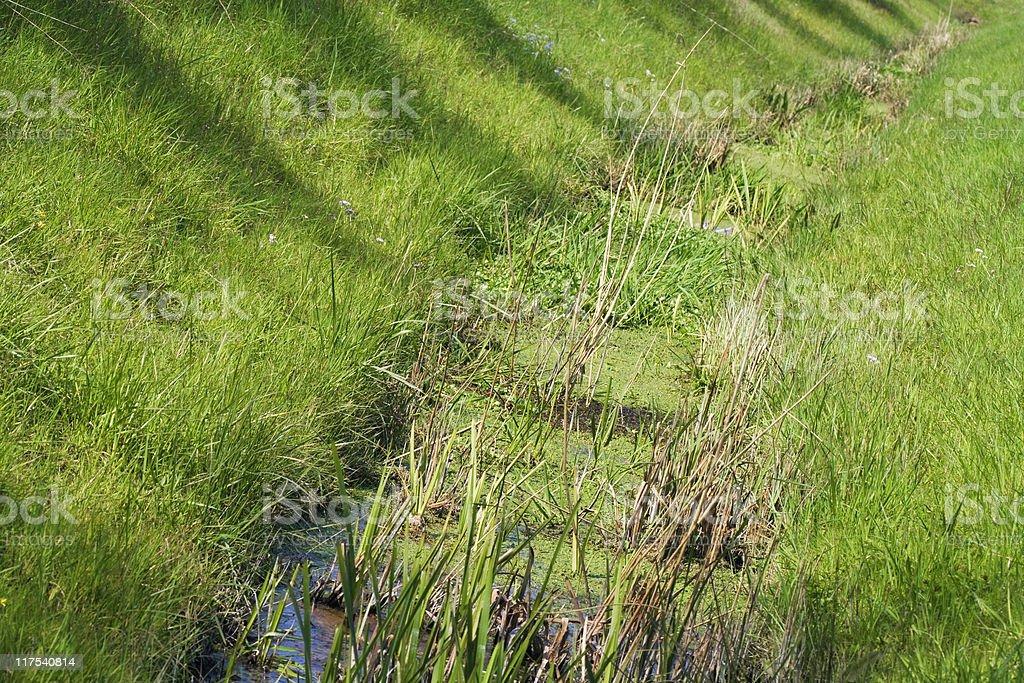 drainage ditch stock photo