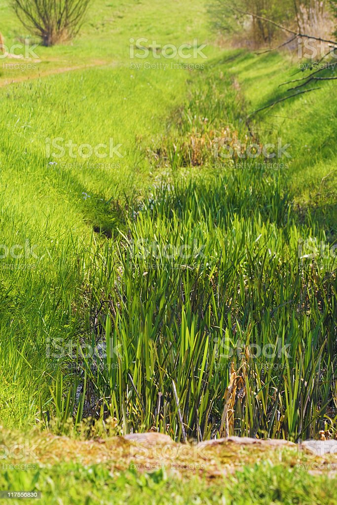 drainage ditch royalty-free stock photo