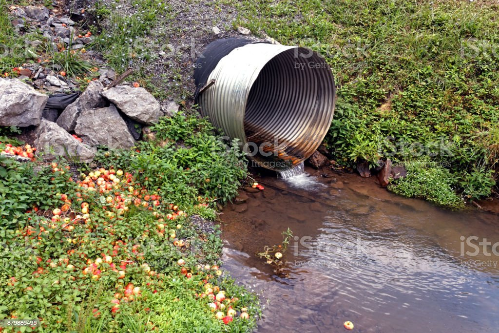Drainage Ditch Stock Photo - Download Image Now - iStock
