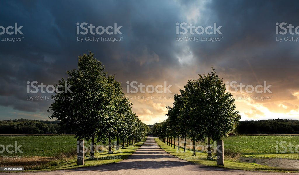 dramatic alley royalty-free stock photo