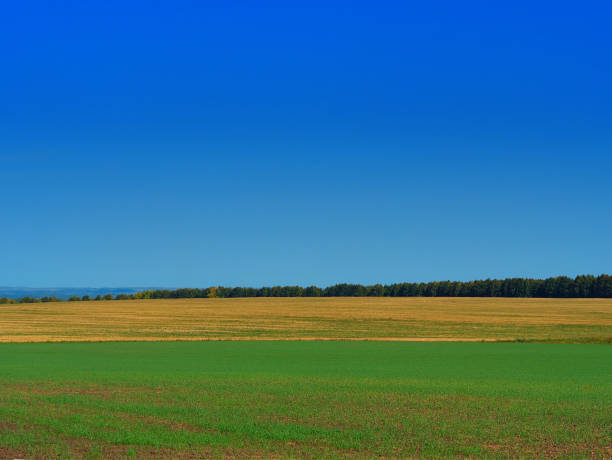 Dramatic autumn farm meadow landscape background stock photo