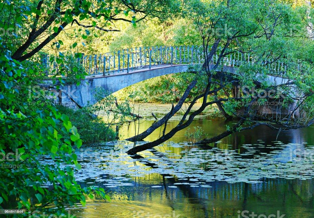 Dramatic bridge at summer park background royalty-free stock photo