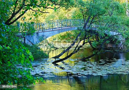 Dramatic Bridge At Summer Park Background Stock Photo & More Pictures of Awe