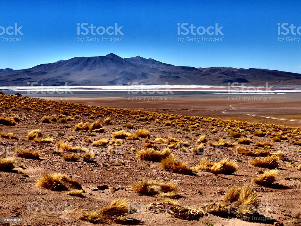 Dramatic colors in the desert stock photo