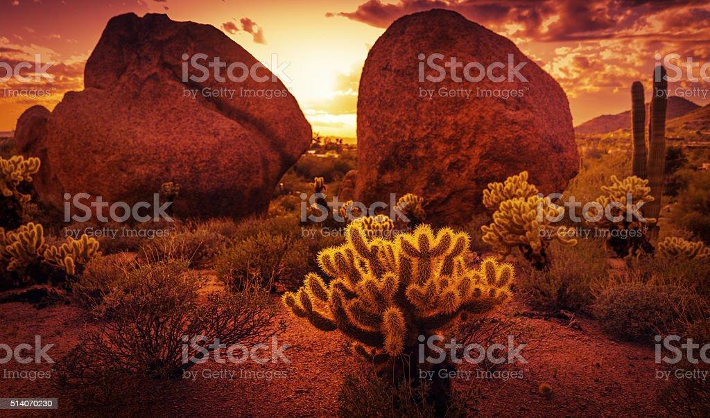 De spectaculaires paysages désertiques à proximité de Scottsdale, Arizona - Photo