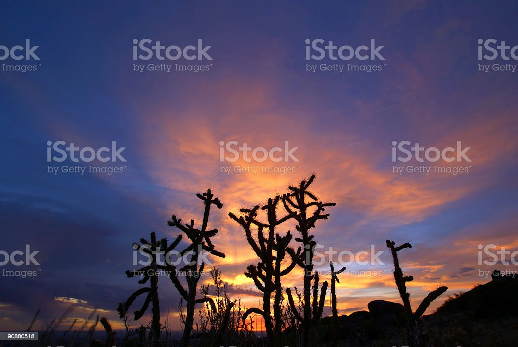 dramatic desert sunset sky royalty-free stock photo