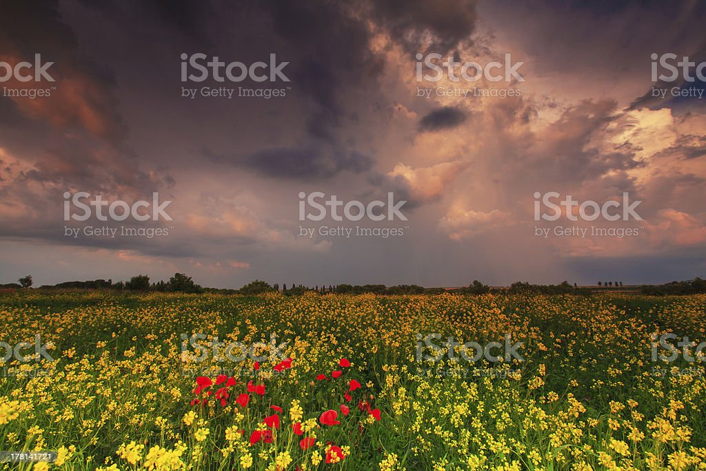 Dramatic evening storm sky royalty-free stock photo