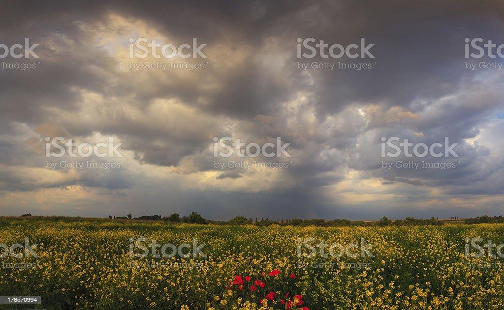 Dramatic evening storm sky royalty-free stock photo