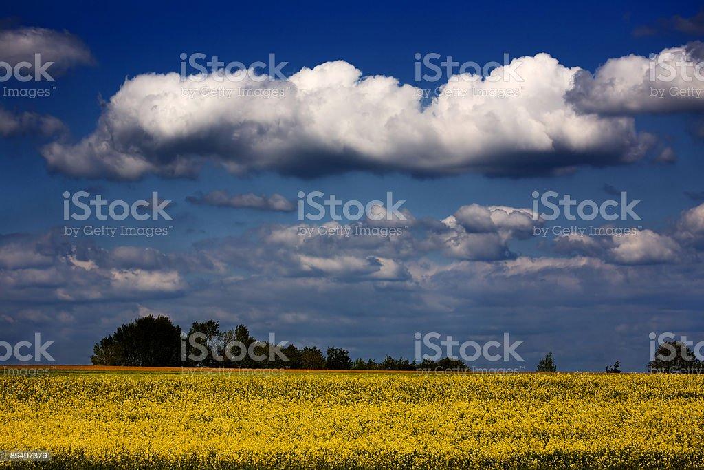 Dramatic Landscape royalty free stockfoto