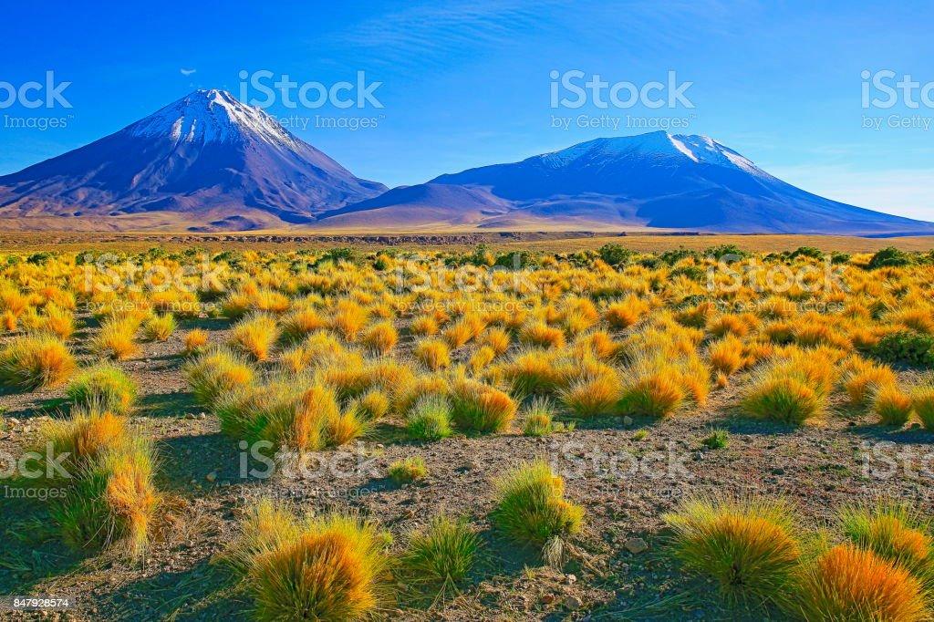 Dramatic Licancabur and Juriques Volcanoes and gold colored steppe at sunset - Idyllic Atacama Desert, Volcanic landscape panorama – San Pedro de Atacama, Chile, Bolívia and Argentina border stock photo