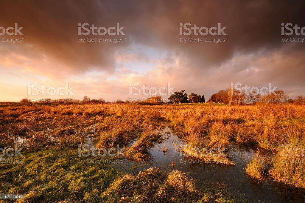 Dramatic Marshland Sunset royalty-free stock photo