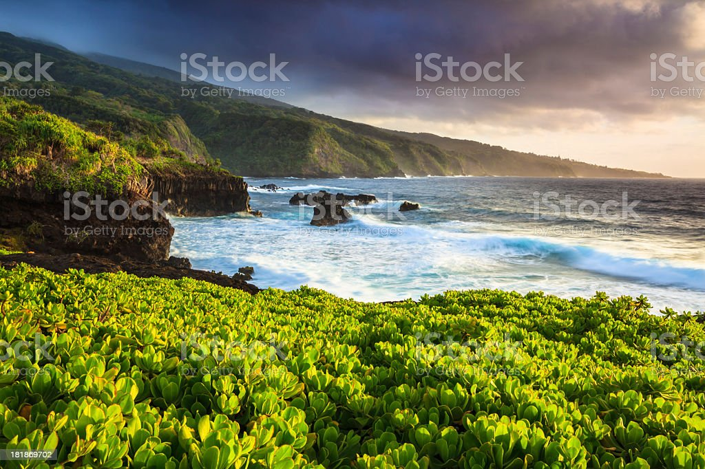 Dramatic Maui Coastline royalty-free stock photo