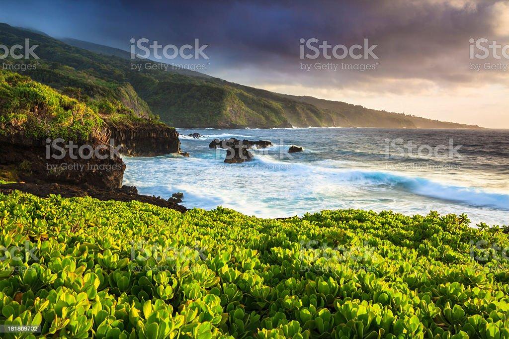 Dramatic Maui Coastline stock photo