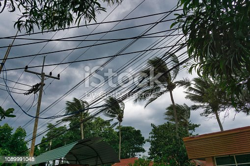 Ko Lanta, Krabi province, Thailand - Jan 04 2019:   The sun is setting behind dark clouds.  Tropical Storm Pabuk is hours away.  The first tropical storm to make landfall in Thailand in decades.  The wind is strong and bending the tall coconut palm trees.  Preparations are underway for the looming natural disaster.  The location is Ko Lanta, Krabi province, Thailand.