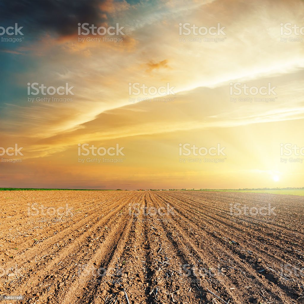 dramatic orange sunset and plowed field royalty-free stock photo