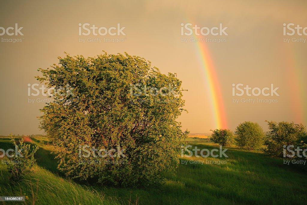 Dramatic Rainbow Sky royalty-free stock photo