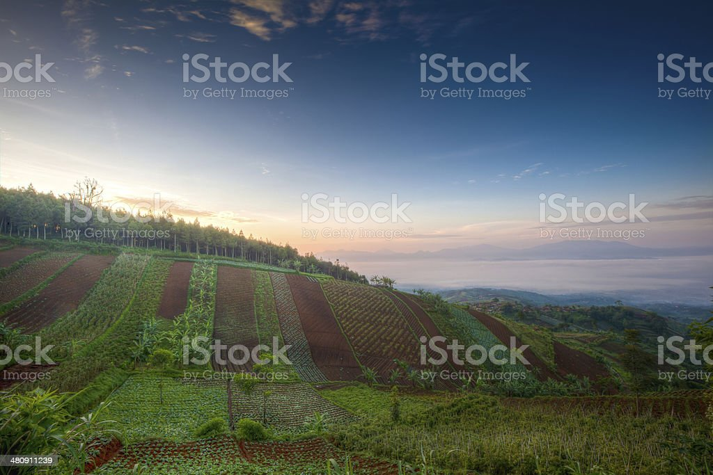 Dramatic sunrise from top of the hill stock photo
