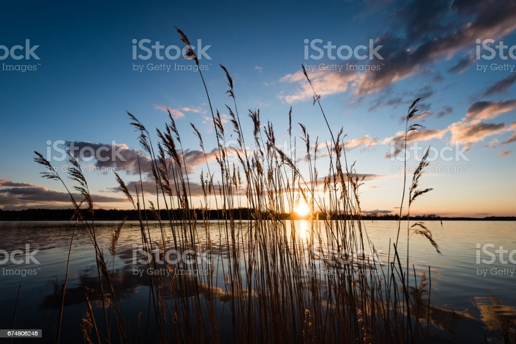 dramatic sunrise over the calm river royalty-free stock photo