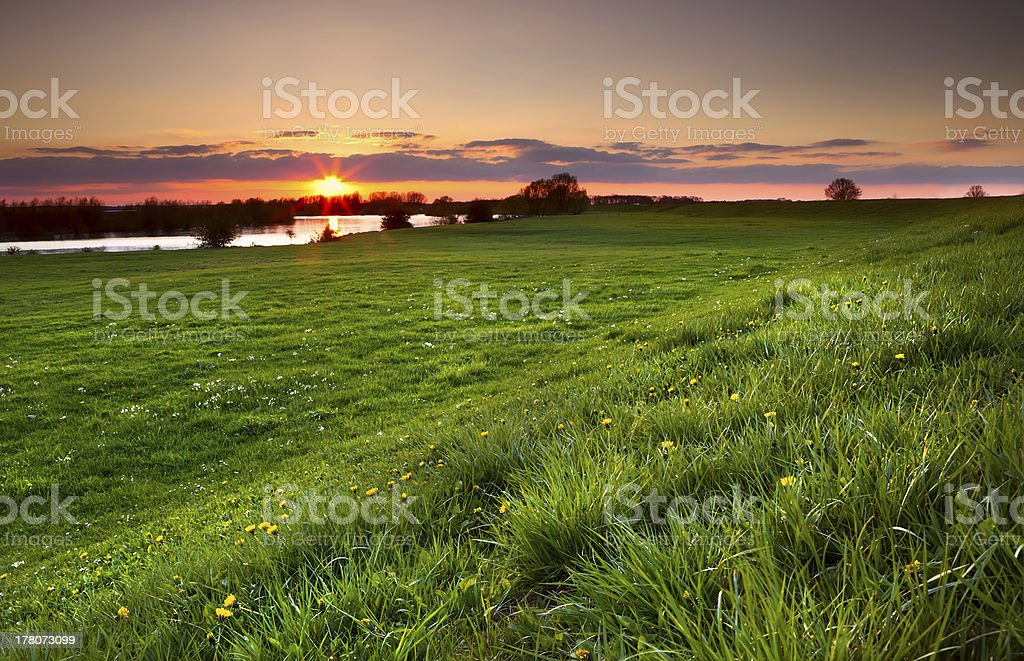 dramatic sunset over flowering meadow stock photo