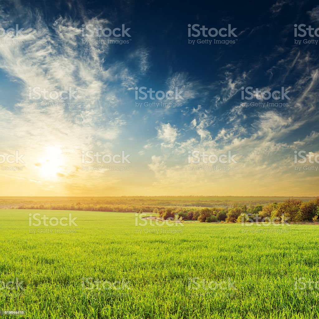 dramatic sunset over green meadow stock photo