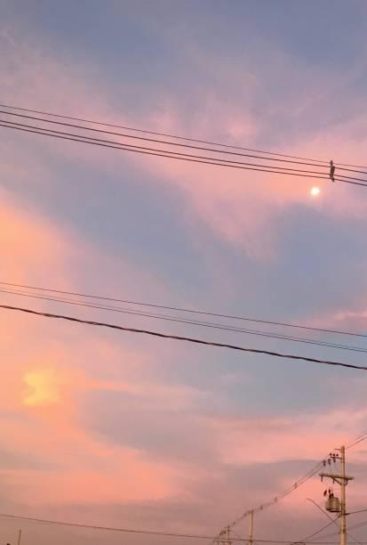 Dramatischer Sonnenuntergang über Stromleitungen – Foto
