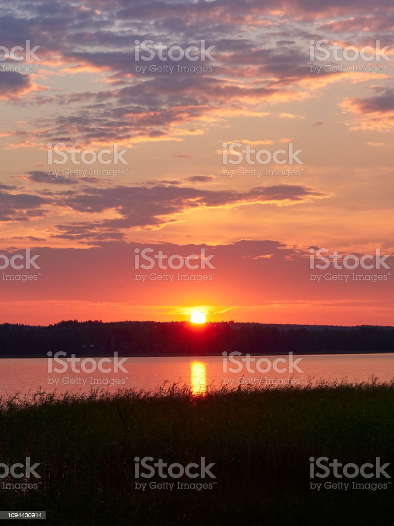 Dramatic sunset sky with the sun and colorful clouds. Beautiful summer night scene in Ruovesi, Finland. Reeds on foreground. Vertical image. stock photo