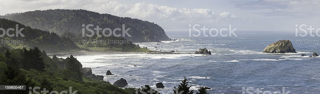 Dramatic windswept ocean surf Pacific coast Oregon stock photo