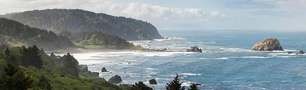 Spettacolare spazzate dal vento della costa del Pacifico oceano surf-Oregon - foto stock