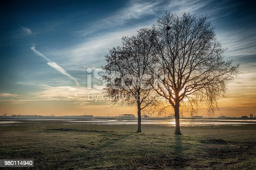 1034754000istockphoto Dramatically colored rural landscape with two leafless trees silhouetted against the bright sun 980114940