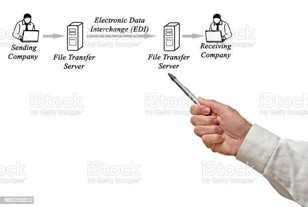 Rita Elektroniska Data Interchange Företaget-foton och fler bilder på Administratör