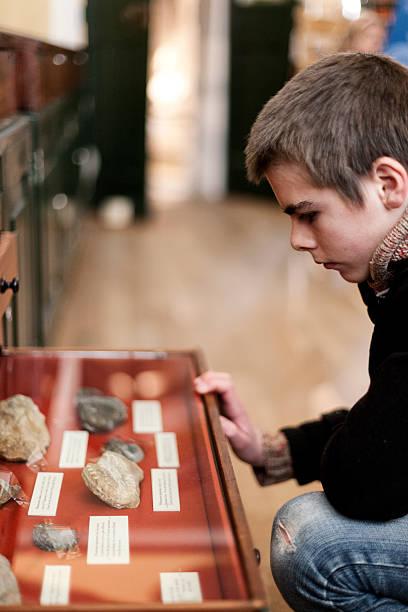 schublade des museum artefakte - vitrinenschrank stock-fotos und bilder