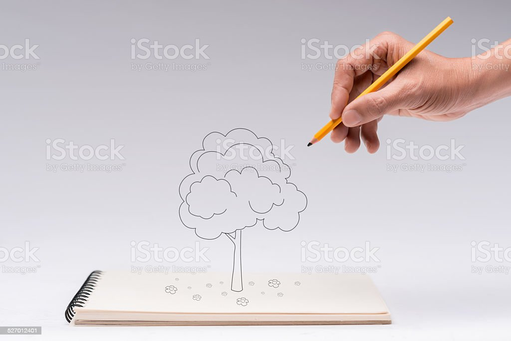 Drawing a tree stock photo