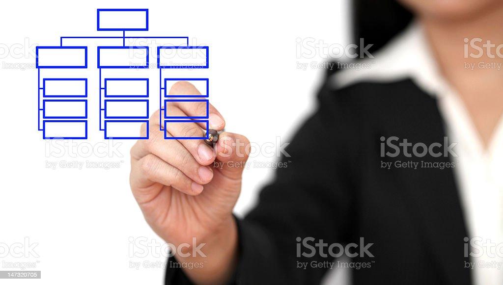 drawing business organization chart Asian business woman drawing organization chart Adult Stock Photo